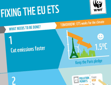 Steps to fixing EU ETS